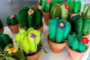 Cactussen van vilt idee-Atelier Alkmaar