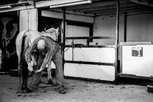 Ron maakt de hoeven van een paard schoon