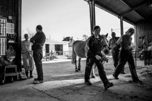 Dik in gesprek in het paardenverblijf