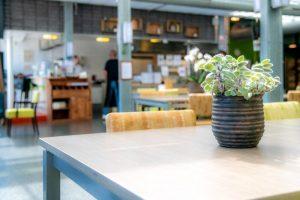 Plantje op tafel in restaurant Wijkwaard Alkmaar